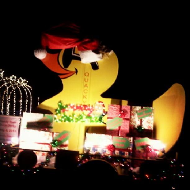 This Christmas display really quacks me up.