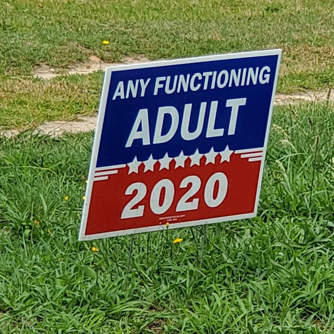 "A yard sign ""Any Functioning Adult 2020"""